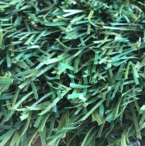 Wholesale Plastic Grass (victoria-25) pictures & photos
