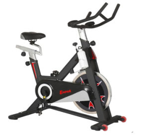 Body Fit Spin Exercise Bike (S770) pictures & photos