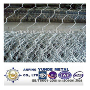 Galvanized/PVC Coated Hexagonal Wire Mesh /Livestock Wire Netting pictures & photos