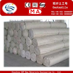 Staple Fibers Needle Punched Geotextile for Landfills Site Project pictures & photos