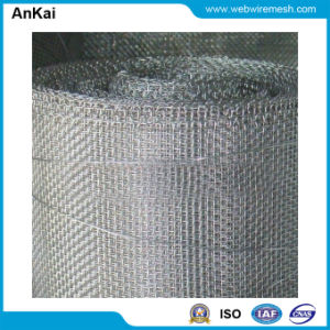 Galvanized Window Screen Gauze Wire Netting pictures & photos
