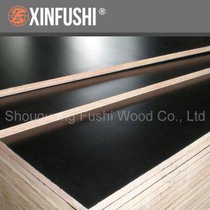 Poplar Core Melamine Glue Concrete Plywood Board pictures & photos