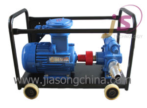 Gasoline Diesel Kerosene Self- Priming Vane Pump pictures & photos