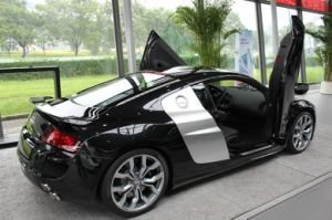Auto Lambo Doors for Ford Mustang 2012 pictures & photos