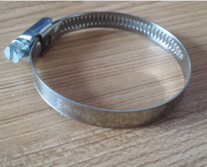 Hot Sale Stainless and Steel Hose Clips with High Quality pictures & photos