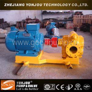 Gear Pump (Oil pump) pictures & photos