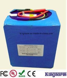24V 20ah/30ah/40ah/50ah/60ah/100ah/120ah Lithium Phosphate Battery for EV Scooter pictures & photos