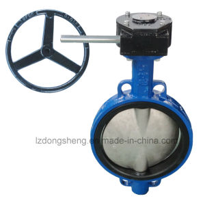 Cast Iron Wafer Type Butterfly Valve with Worm Gear and Lever pictures & photos