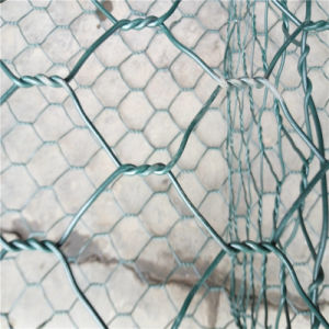 Heavy Galvanized PVC Coated Gabion Basket Wire Mesh pictures & photos