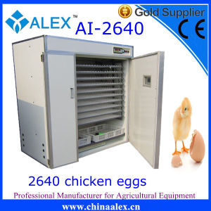 2015 Hottest Industrial Egg Hatcher with Best Quality