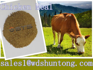 Chicken Meal for Animal Feed pictures & photos