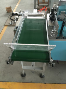 Individual Flexible Straw Packing Machine pictures & photos