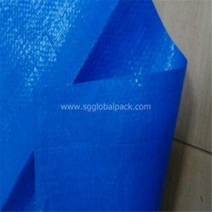 Blue Color Brazil Width 156cm/206cm170GSM PE Tarpaulin pictures & photos