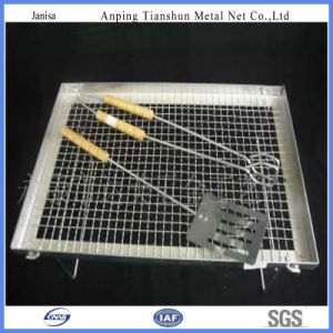 Barbecue Grill Wire Mesh with Good Quality (TS-J405) pictures & photos