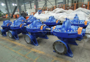 Centrifugal Pump (M&W pump) pictures & photos