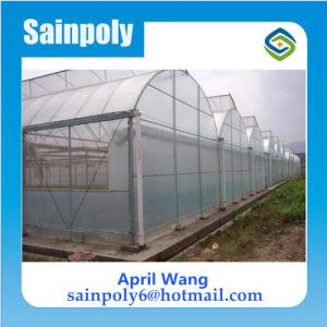 Low Price Plastic Film Greenhouse for Potato pictures & photos