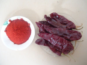High Quality Paprika Powder pictures & photos