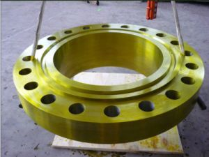 ANSI B16.5 Standard Forged Flange for Industrial Using
