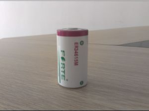 Flow Meter Battery Er34615m