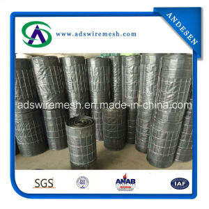 Wire Backed Silt Fence (70g Black Fabric) pictures & photos