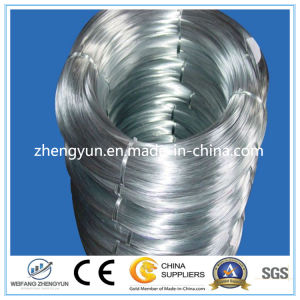 Electric Galvanized/Galvanized Steel Wire Manufacturer Providing Free Sample pictures & photos