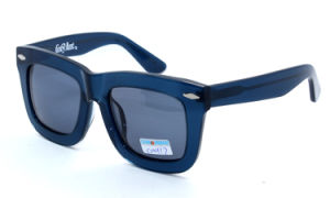 The Latest New Sunglasses (C0122-1) pictures & photos