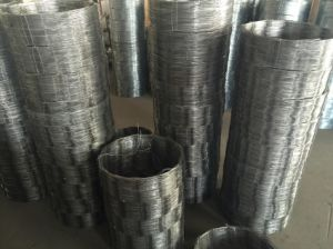 Razor Barbed Wire Cbt65 Stainless Steel 304---Factory Supplier pictures & photos