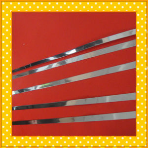 430 Narrow Stainless Steel Strip pictures & photos