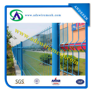 PVC Coated High Quality Wire Mesh Fence /Garden Fence (ADS158) pictures & photos