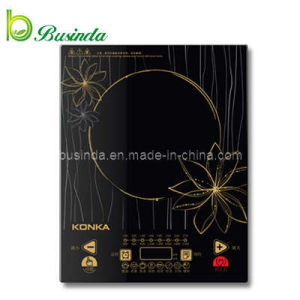 Induction Cooker (BD-21CS13)