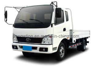 Powlion T10 4 Ton Space Cab Truck (WP1044P10K-4)