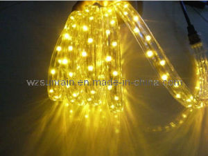 LED Rope Light (Flat 3 Wires) (SRFL-3W) pictures & photos