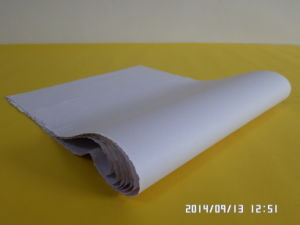 a Type of Paper for Pharmaceutical