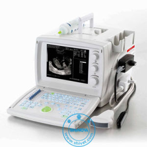 Portable Ultrasound for Veterinary (SonoScan P1V) pictures & photos