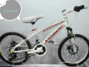 2013 Cool MTB Bicycle for Girls (2013X-1)