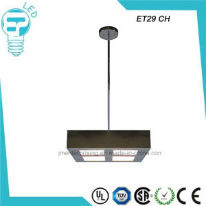 Et29 Square LED Pendant Light Flush Mounted Ceiling Light pictures & photos