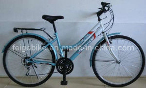 China Factory City Mountain Bicycle (CB-024) pictures & photos