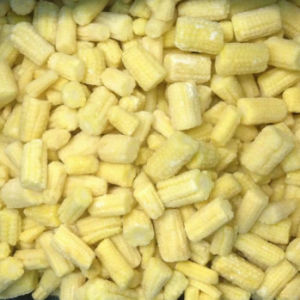IQF Baby Sweet Corn, Whole, Slice, Cut, Frozen Baby Corn