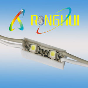 Waterproof LED Modules (RH-F0524X2SMD3528)