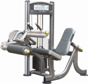 Seated Lge Curl Fitness Strength Gym (IT9006)