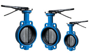 Chines Butterfly Valves with Blue Painting pictures & photos
