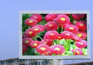 Cocto CREE USA LED Display Display Screen