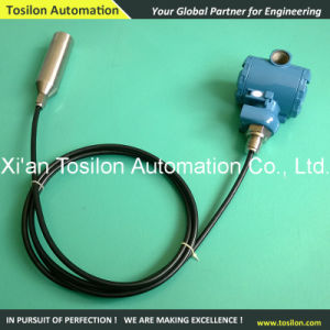 Submersible Type Digital Water Level Sensor for Tank pictures & photos