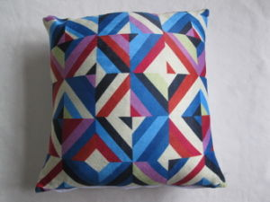 Printed DEC Pillow Filled Curshion Mj2965 pictures & photos