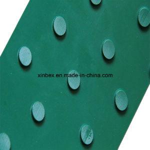 PVC Big DOT Green Conveyor Belt pictures & photos