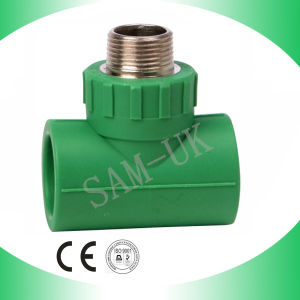 Male Tee with Brass for Water Supply pictures & photos