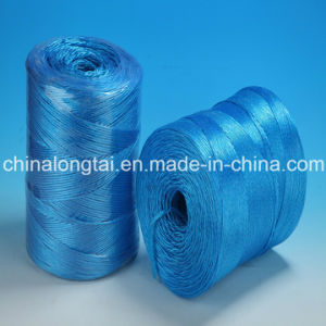 2000d-750000d High Breaking Load Agriculture and Industry Packing Rope Twine pictures & photos