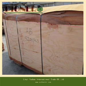 4′x8′natural Plb Veneers for Indian Market pictures & photos