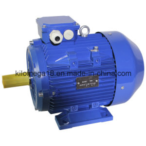 Y2 Series 3-Phase Asynchronous Electric Motors for Industry with Ce pictures & photos