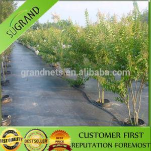 100% Polypropylene Ground Cover/Weed Mat/Ground Mat pictures & photos